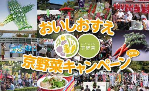 野菜d5484-104-378262-0