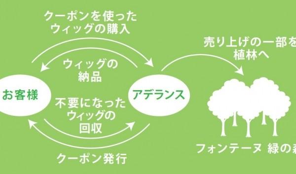 フォンテーヌ緑の森キャンペーン